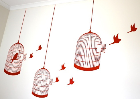 red birdcage and birds vinyl wall sticker