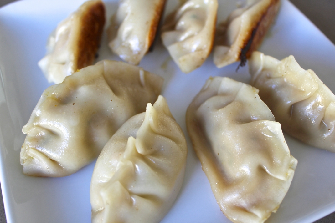 Japanese Gyoza dumplings Hey bernice recipe cooking healthy cabbage pork dinner savoury entree
